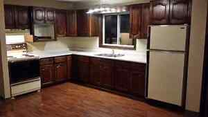 3 bedroom apartment in Frankford
