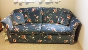 Couch/Hide-a-Bed
