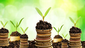 Investments for New & Experienced Investors