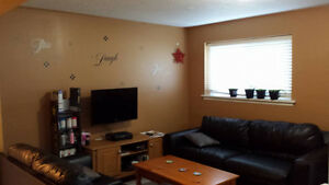 SHORT WALK TO CONESTOGA COLLEGE- ROOMS FOR RENT-BEST PRICES Kitchener / Waterloo Kitchener Area image 2