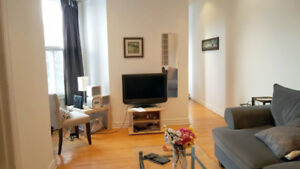 Close to McGill, Large 3 BR, Renovated, Plateau apartment