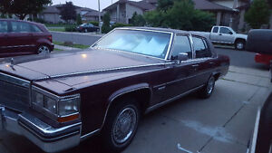 Caddy 1984 Fleetwood mint