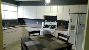 Roommate wanted for 2bdr suite in Brock