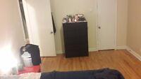 OFFRE EN OR 800$ Superbe Appartement à louer NDG/Côte-des-neiges