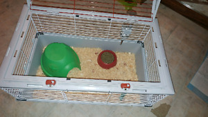 Bunny cage !!! Brand new !!!