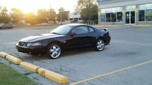 2003 mustang GT new safety