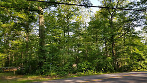 Private Mature Wooded Lot for your dream home.