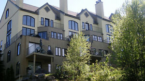Superb condo/loft at the bottom of Mont-Tremblant