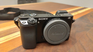 Sony a6000 w/ 2 batteries and case
