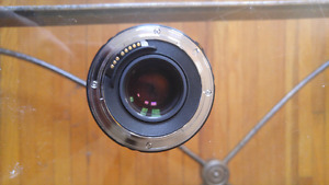 Tokina 300mm F4 and kenko 1.4x teleconverter for Canon