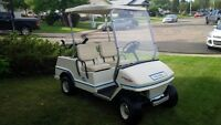 ParCar Oil Injection Golf Cart