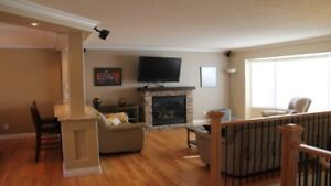 Executive Suite Near West Edmonton Mall !