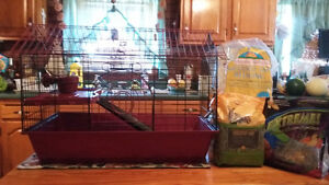 Guinea Pig Cage and Supplies