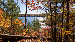 Cantley waterfront: 2 lots totaling 1+ acre on Gatineau river