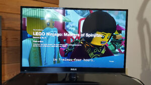 29 in RCA LED TV, Can be a monitor.