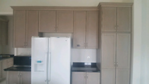 Whole kitchen. Cabinets and granite
