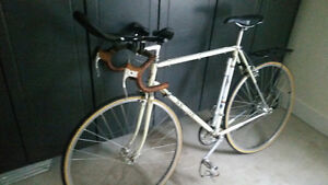 Setine Road Bike