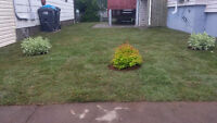 R&E landscaping is offering $1.00sqf