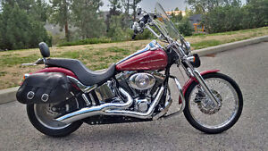 H.D. SOFTAIL DEUCE - REDUCED !!!!