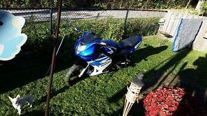 2005 suzuki gs500 f, 16k kms,$500 yr 4 ins,will trade 4 ....
