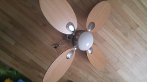 Ceiling fan/floor lamps/hardwood coffee table/loveseat