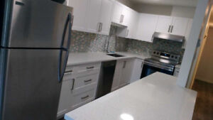 3 Bedroom Suite: totally new renovation, city centre