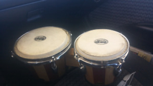 Bongos hand drum must go today!!!