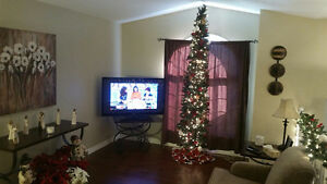 392 Marla Crescent – 4 years old - loaded with extras!! Windsor Region Ontario image 4
