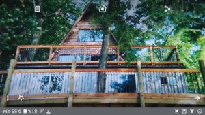 All Season Cottage/House on Buck Lake! Quiet location