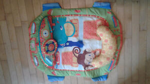 Play mat and tummy time mat