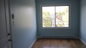 Newly renovated and ideal for bachelors