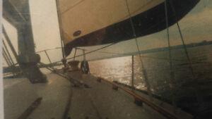 1981 32' BAYFIELD SAIL BOAT