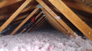 PROTECT YOUR ROOF WITH INSULATION London Ontario image 1