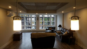 Roommate wanted for 2 bedroom apartment at The Kight Nov/Dec