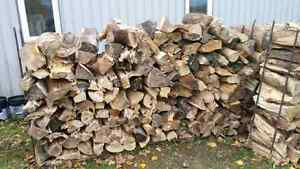 Firewood for sale. Elm Kitchener / Waterloo Kitchener Area image 2