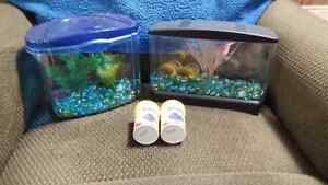 FOR SALE -  BETTA    ITEMS