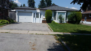 Oversized 1 Bdrm (All Inclusive) Bsmt South Ajax