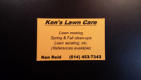 KEN'S LAWN CARE (SNOW CLEARING OF WALKWAY)