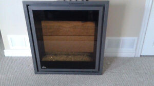 Mint Condition Fireplace Insert