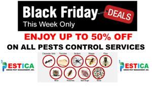 Black Friday Deals on All Pest Control Services
