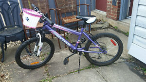 "Girls 5 Speed Bike 20"" - Works Perfect"