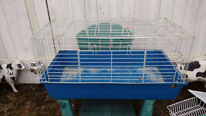 Rabbit G-Pig Heage hog  Chick's Cages for sale,
