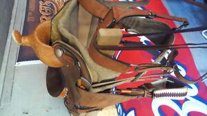 """16"""" Roping Saddles"""