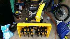 For sale snowblower