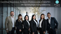 Become a Certified BA / BSA - Be mentored by industry expert