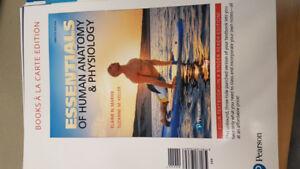 Essentials of Human Anatomy & Physiology 12th Edition