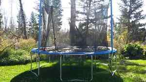 13 foot Trampoline with net