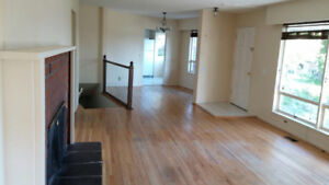 Canyon Heights Home- Great for working Professionals
