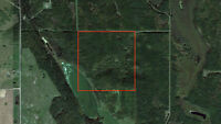 Recreational/Farm Land with Lake Access!