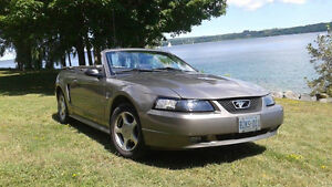 CERTIFIED 2001 Ford Mustang Convertible